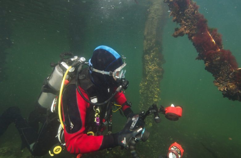 Wil jij onderwater gaan fotograferen?