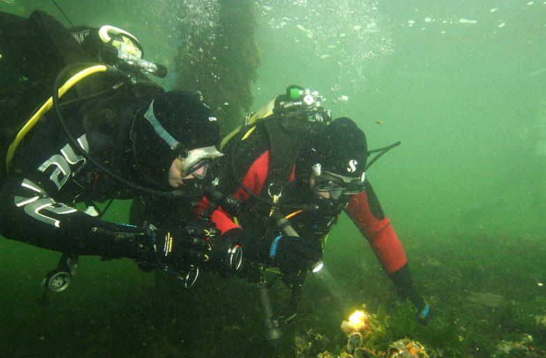 Een duikweekend vol gezelligheid